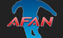 Premiile AFAN - editia 2014