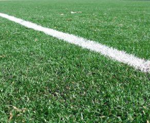 Daniel Niculae: Terenul sintetic este moartea fotbalului