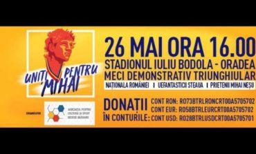 """""""Uniți pentru Mihai Neșu"""" 2018"""